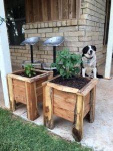 Cedar Planter Boxes_2